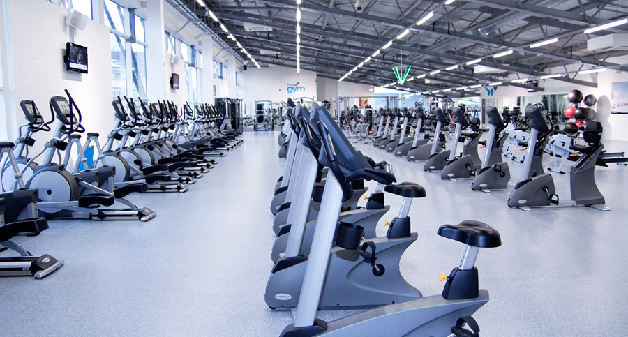 rows of cardio equipment in a large gym design