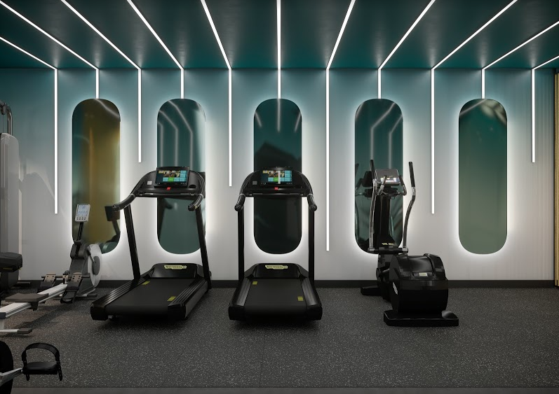 two treadmills and a crossfit machine against a wall of mirrors